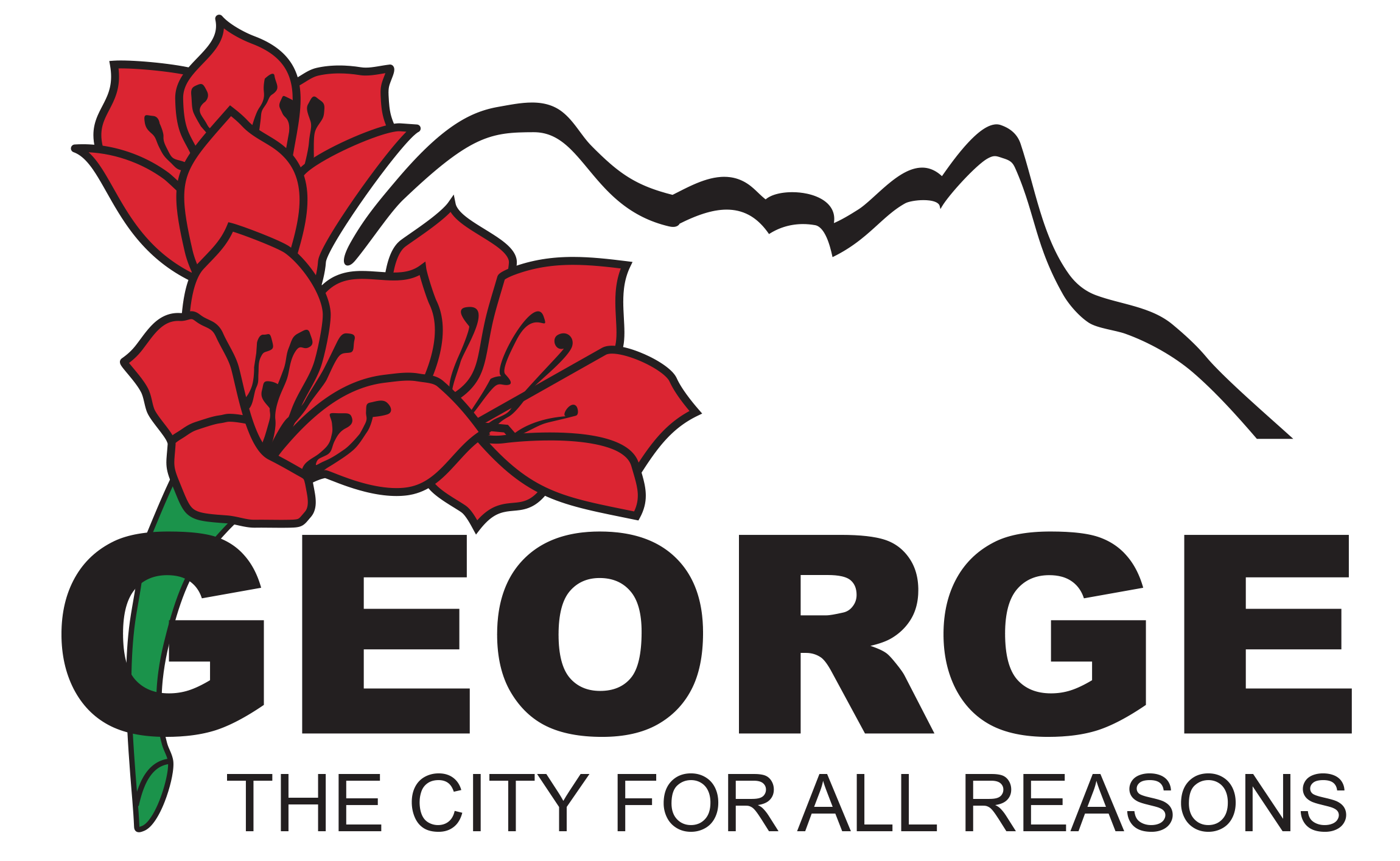 George Municipality City For A Sustainable Future